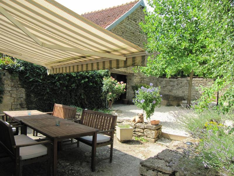 Spacious dining terrace - Stone cottage in traditional Burgundy village - Tonnerre - rentals
