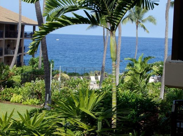 View From the Lanai - Ocean Front Kona Makai Perfect Sunset Views Furnished 1 bedroom Condo - Kailua-Kona - rentals
