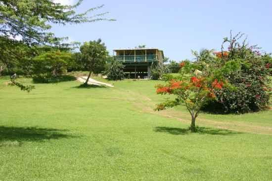 A secluded hill. - Amarilla Casita In Vieques - Isla de Vieques - rentals