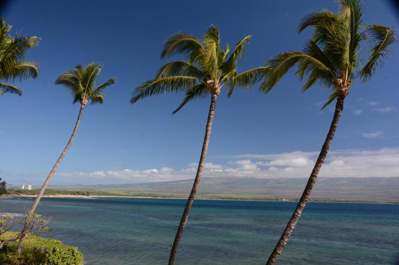 Spectacular panoramic ocean front - INCREDIBLE Oceanfront View with LUXURIOUS Comfort! - Maalaea - rentals
