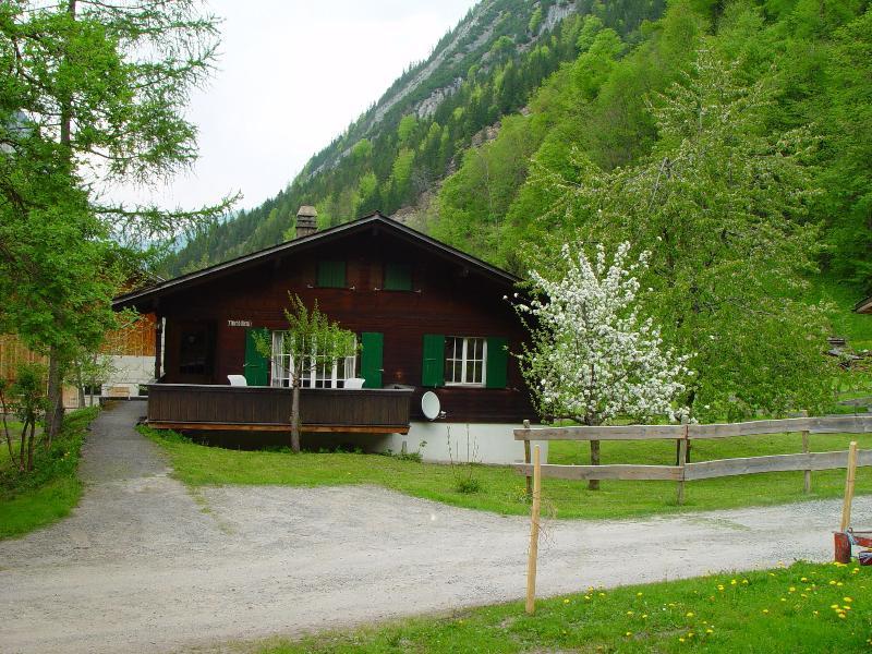 Summer Chalet - Traditional Swiss Chalet - Lauterbrunnen - rentals