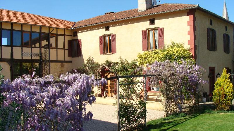 Wisteria from gite garden - Visit Paradise! - Betpouy - rentals