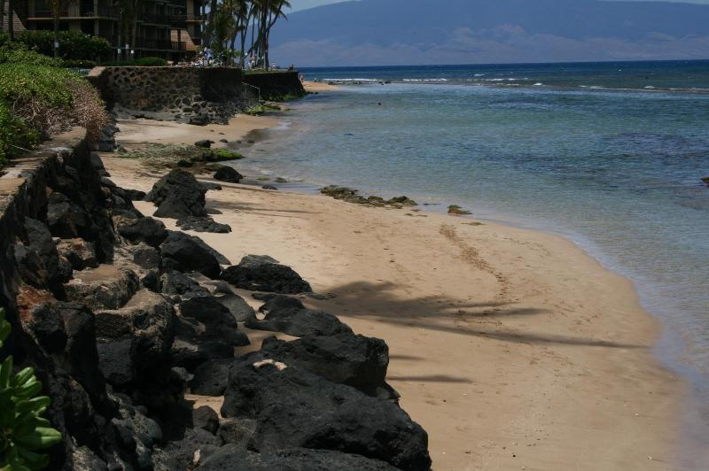 Beachfront area just steps to the condo! - Fantastic Remodeled Oceanfront one Bedroom Condo! - Napili-Honokowai - rentals