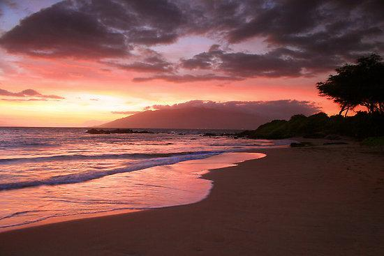 Ooh Awe, ooh awe sunsets from beach close to house - Spectacular Ocean View Beach 1/2 mi, Wailea/SKihei - Kihei - rentals