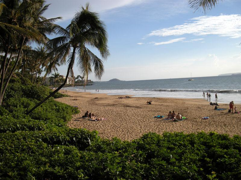Charlie Young Beach - 2 blocks from the condo! - Eco-Friendly Condo Located in the Heart of Kihei - Kihei - rentals