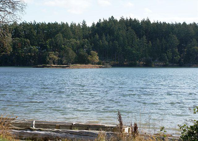 The shore of Mitchell Bay as seen from the back yard. - Mitchell Bay Shores - Friday Harbor - rentals