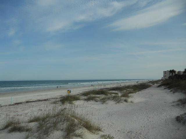 The view from our beach ramp - Steps to Ocean Hot Tub Firepit Fence Pet Friendly - New Smyrna Beach - rentals