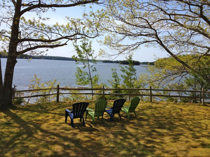 Front yard - Maine. Lovely Cottage on Penobscot Bay - Penobscot - rentals