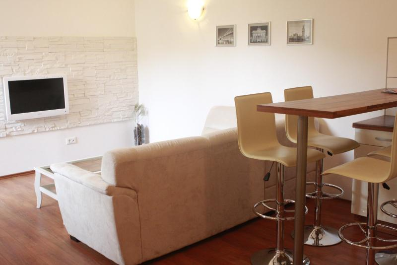 Living room and kitchen area - Apartment in Zagreb centre - Nova ves street - Zagreb - rentals