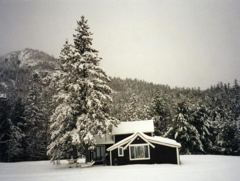 Ausable cottage in Winter - Adirondack Cottage Jay Whiteface Lake Placid NY - Jay - rentals