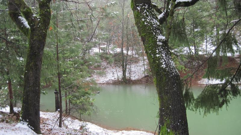 Seasonal Pond and Dock in the Winter - Gold Run Mountain House, Spa, Hiking, Rollins Lake, Snow - Gold Run - rentals