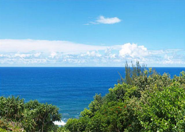 Alii Kai 6102: Spacious oceanfront condo, updated, great for whale-watching! - Image 1 - Princeville - rentals