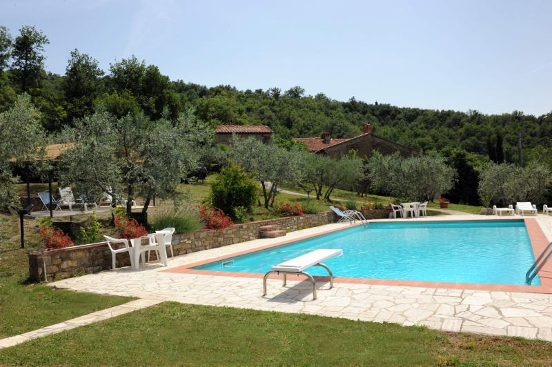 3 Cottages in an ancient Tuscan village with Pool - Image 1 - Castiglion Fiorentino - rentals