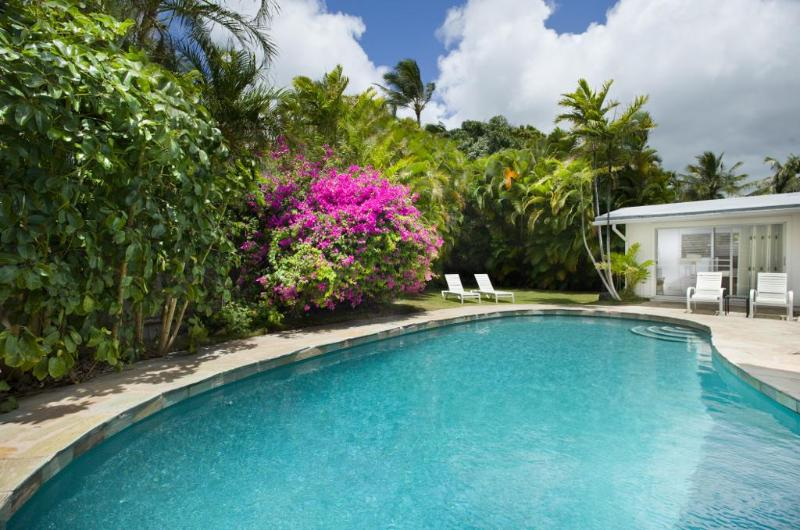 Large Pool and Backyard Grass Area which is 26 X 26 Feet - Spacious Ocean View Home with Pool - Honolulu - rentals