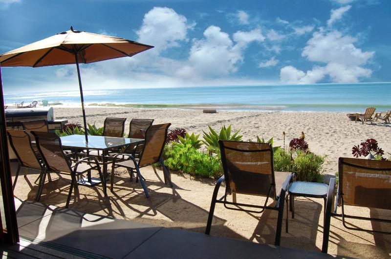 Luxurious Executive Beach House on the Sand! 301 - Image 1 - Capistrano Beach - rentals