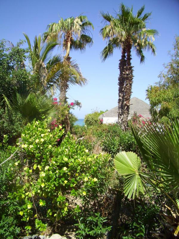 Ocean view - Lovely Casitas Moments From Beach - Cabo Pulmo - rentals