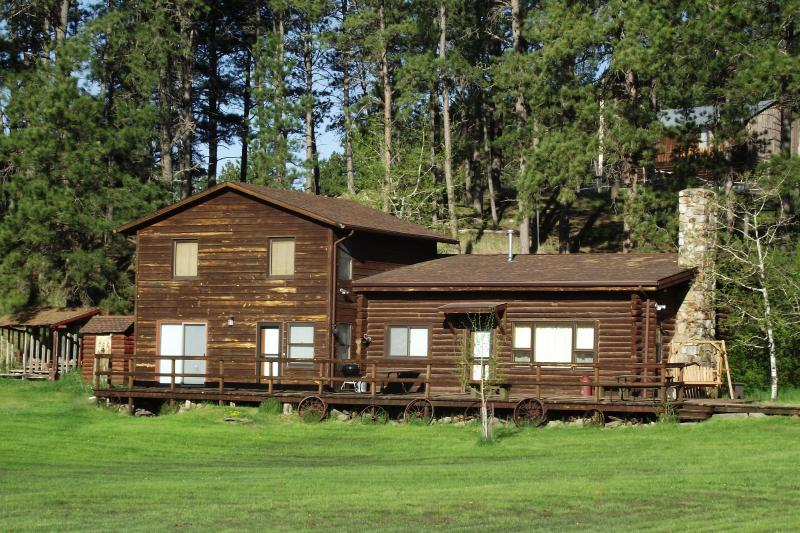 5 Bdr Historic Getaway (Sky View Cabin )Custer SD - Image 1 - Custer - rentals