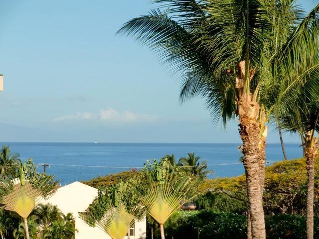 View from Lanai - Maui Banyan, next to beautiful Kamaole 2 Beach! - Kihei - rentals