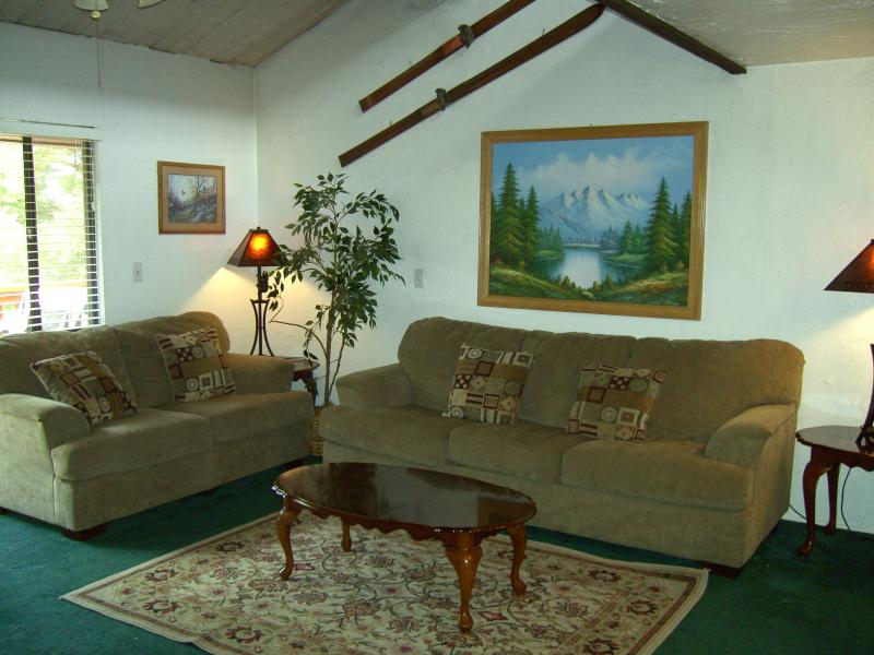 LIVINGROOM - Snow Summit Condo -Mountain Bike-in/out - Big Bear Lake - rentals