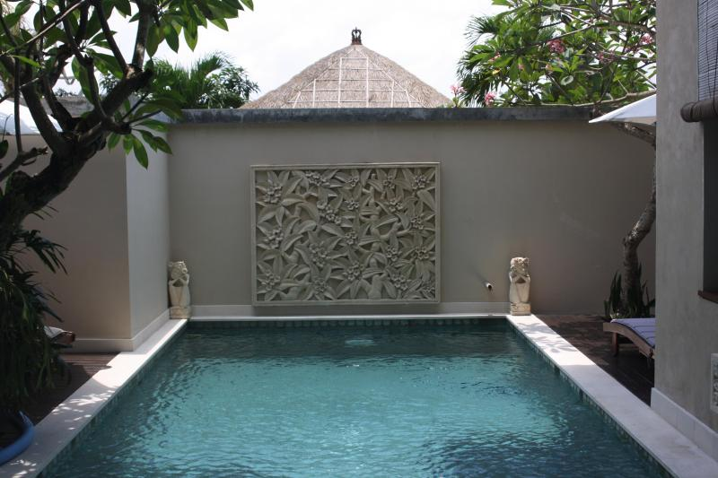 Our spacious 9metre pool - Villa Bhujangga...big, beachside garden paradise! - Canggu - rentals