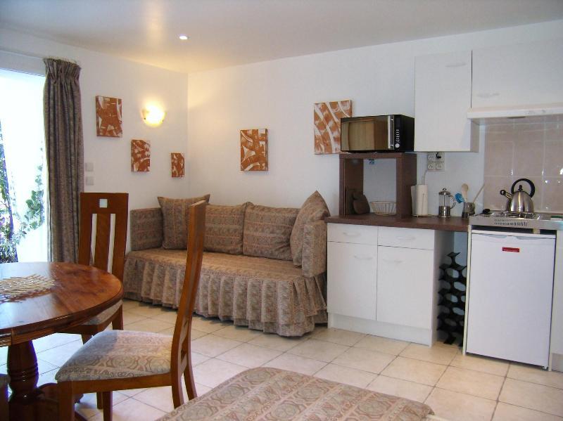 STUDIO TILLEUL - STUDIO TILLEUL - Loire Valley - rentals