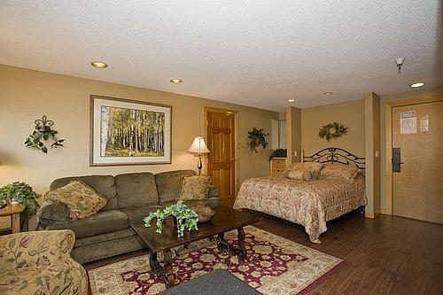 Upgraded Family Room - Village @ Breckenridge Studio,  10% off thru 6/29 - Breckenridge - rentals