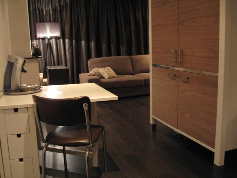 overview from kitchenette area into living room - apartment in the breathing hart of Quartier Latin! - Amsterdam - rentals