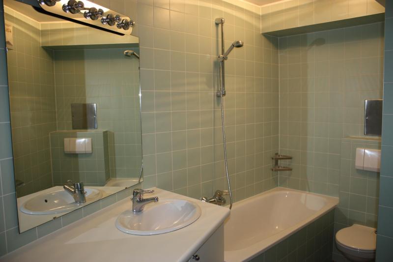 Cosy Studio Vienna Type A - Apartment Rentals Vienna - Vienna - rentals