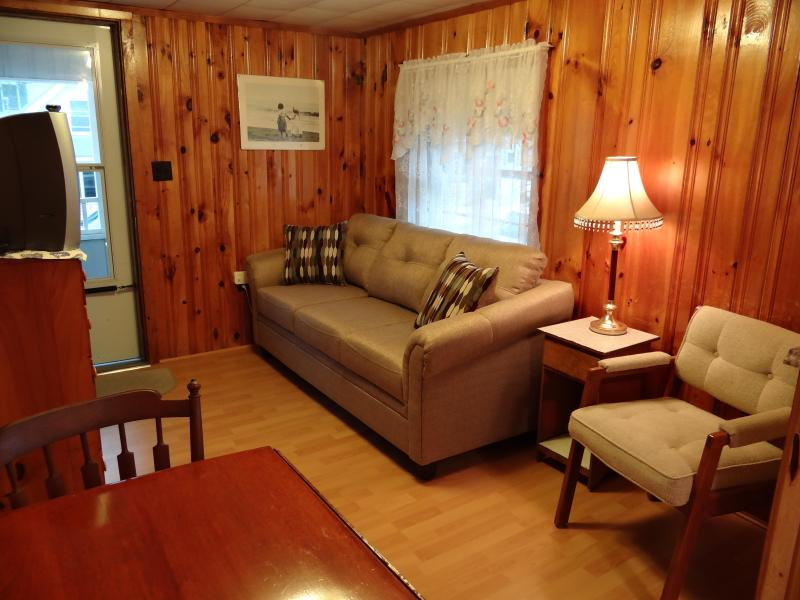 Living room w/ new couch - Newly Renovated Beach Cottage! - Hampton - rentals