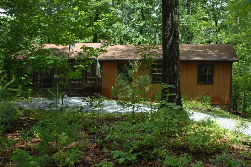 Cozy Little Mountain Cabin - Secluded Cozy Mountain Cabin with Hot Tub - Luray - rentals