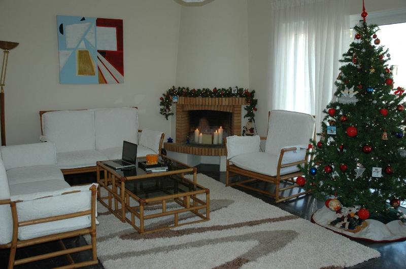 sitting room - Flat in Athens near the sea ,center and Piraeus - Athens - rentals