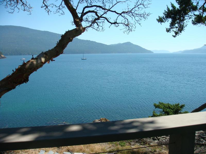 View from terrace - Stunning ! Waterfront Orcas Walk to Eastsound - Eastsound - rentals