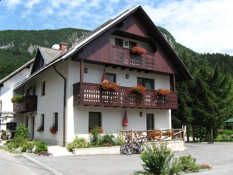 apartment house - BOHINJ valley - NA VASI Apartments - Bohinjska Bistrica - rentals