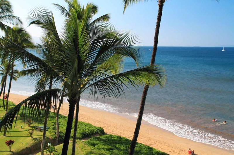 SUGAR BEACH RESORT, #519 - Image 1 - Kihei - rentals