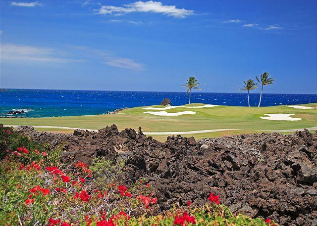 Signature Hole with ocean views - OCEAN FRONT VILLA! LAVA FLOW SPECIAL AUG.-OCT. 7TH NIGHT COMP - Kamuela - rentals