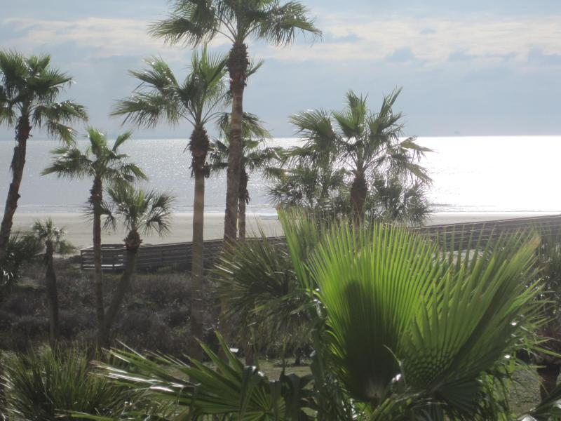 Tropical Views of the Ocean from one of your private balconies on our 3rd level condo - Oceanfront 1BR condo at Galvestonian on East Beach - Galveston - rentals