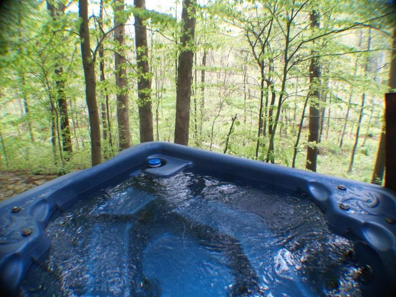 Hot Tub sits on the ravine with beautiful views! - Aqua Turtle Creek Hideaway $2995 HOTTUB POOL TABLE - New Buffalo - rentals