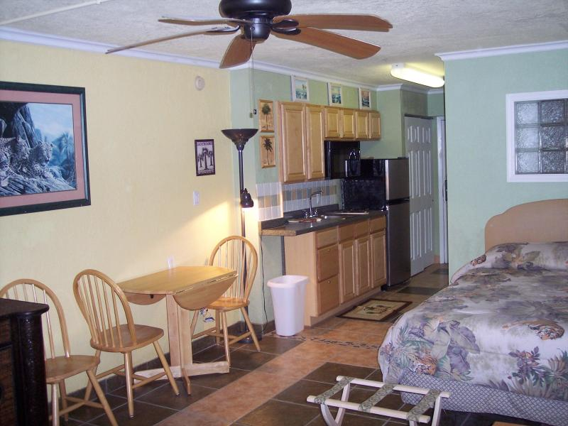 Clean and comfortable accomdations - Direct Oceanfront Fun ! - Daytona Beach - rentals