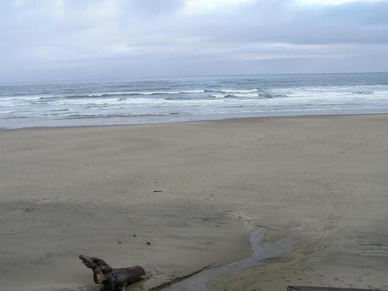 Heartrock Beachfront Cottage - Image 1 - Lincoln City - rentals
