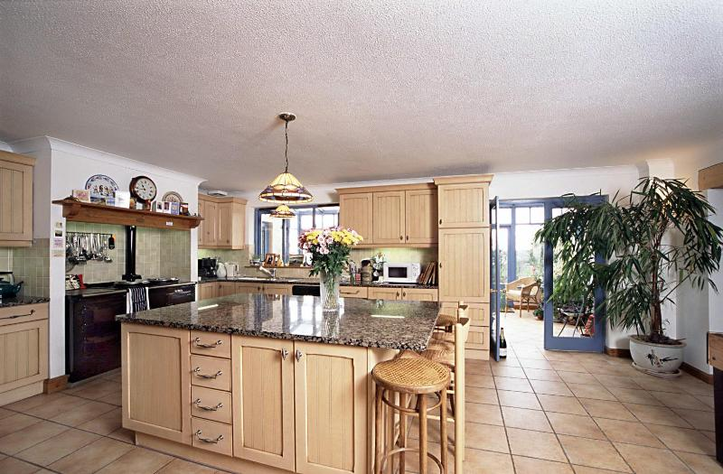Large open plan kitchen with Aga & granite work space - Cornwall 6 Bed Luxury House with Stunning Views - Liskeard - rentals