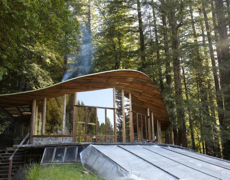 Parabolic All-Glass House in the Redwoods - Image 1 - Mendocino - rentals