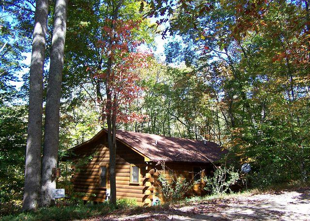 Hummingbear Ledge at Cherry Log Mountain - Hummingbear Lodge The perfect cabin for 2 couples - Cherry Log - rentals