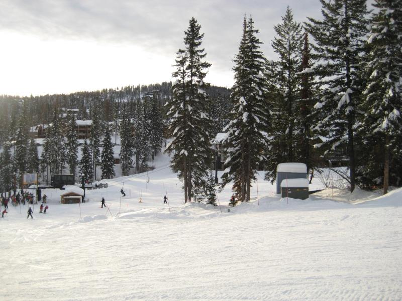 Whitefish powder - 3 BR condo in Whitefish MT base of Glacier Park - Whitefish - rentals