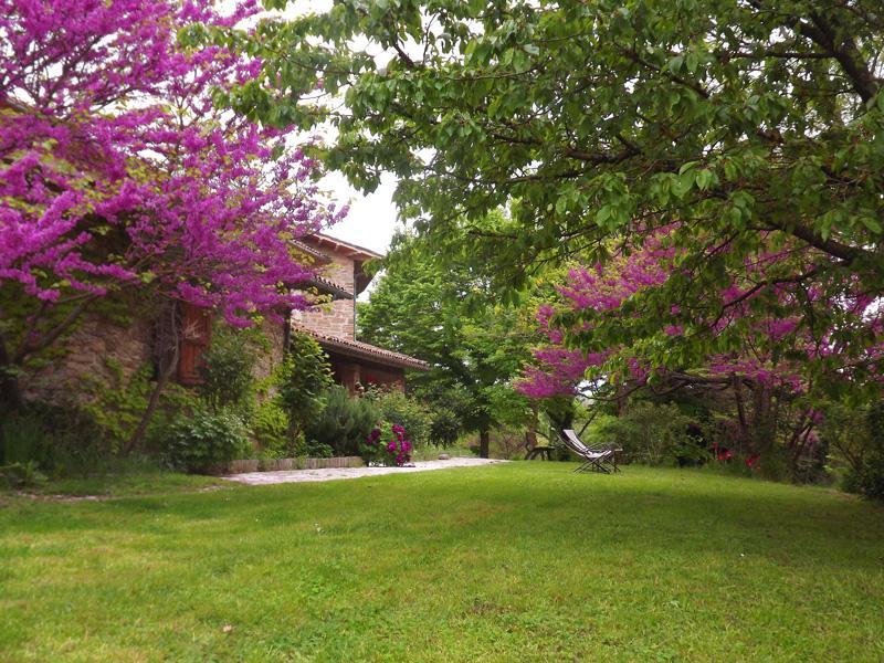 welcome - Agriturismo Casa Branca - Gubbio - rentals