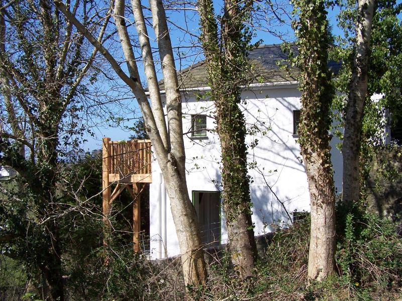 Cottage in the trees. - Tree Tops Cottage - Llanbedr - rentals