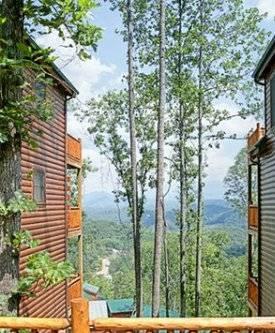 Bear Ridge - Image 1 - Sevierville - rentals
