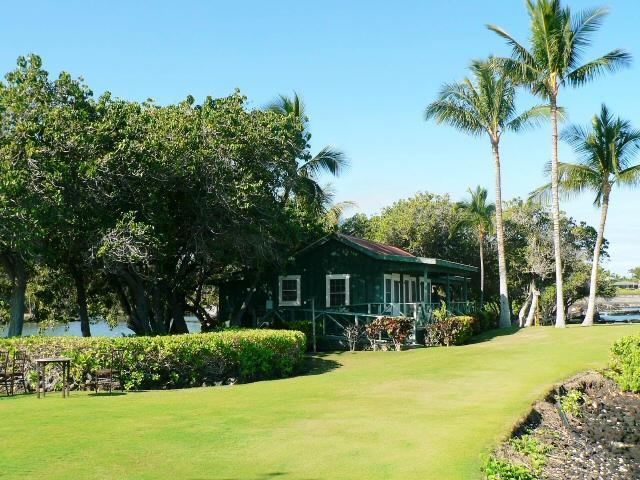 grass in front - Oceanfront Mauna Lani Resort - Kamuela - rentals