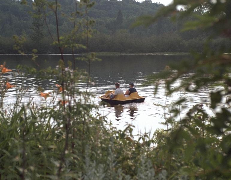 Relaxing along the lake - Woodland Echoes Cottage #6 - Magnetawan - rentals