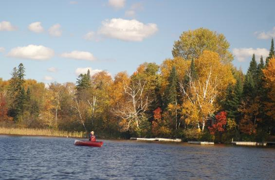 A view from the lake - Woodland Echoes Cottage # 5 - Magnetawan - rentals