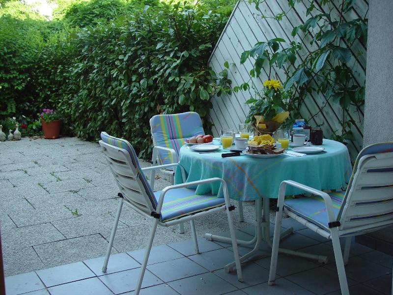 Private patio and yard for al fresco eating or reading - Downtown Innsbruck, garden apt. walk to everything - Innsbruck - rentals